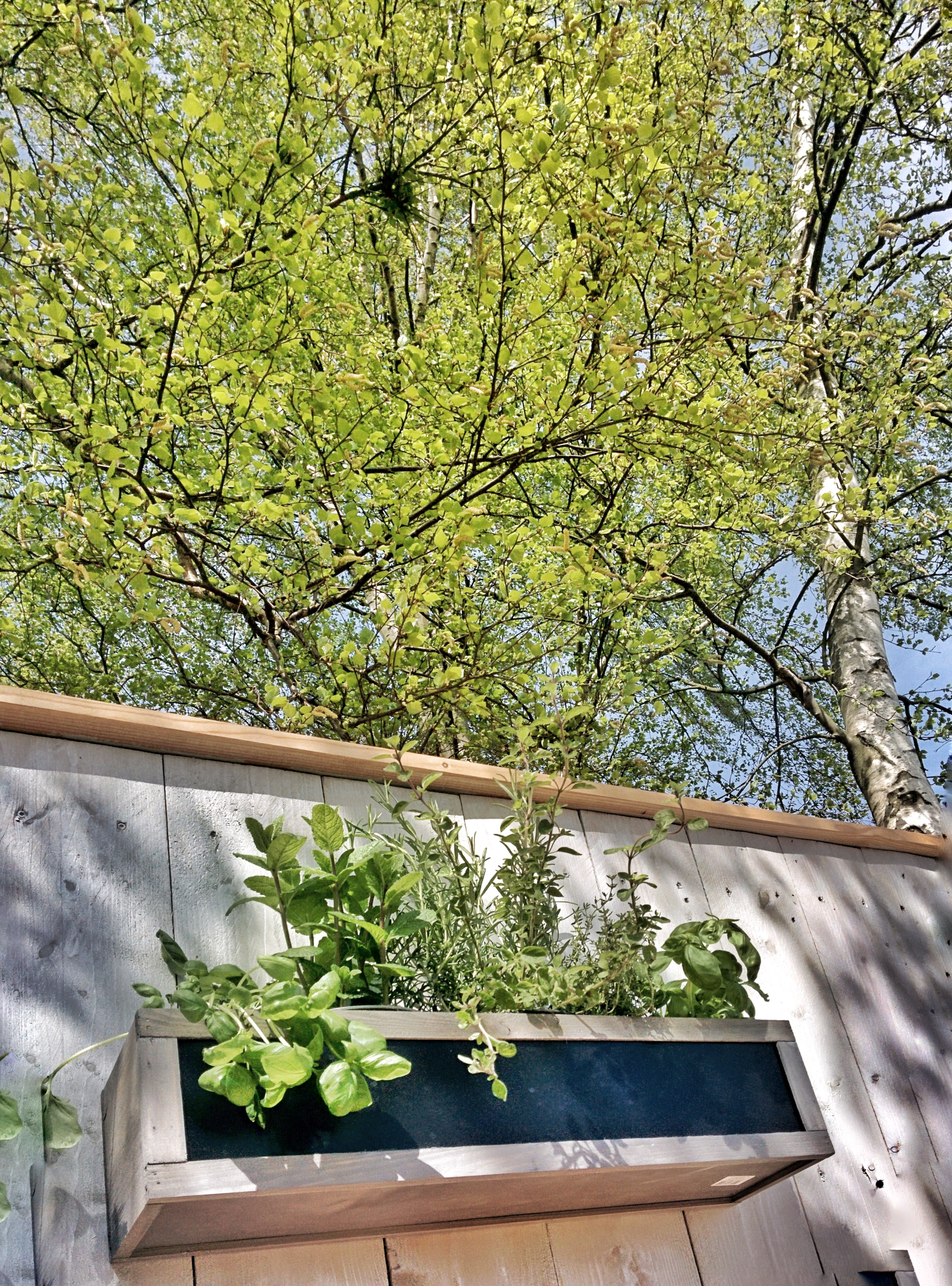 25_Kräuter-Outdoor-Küche